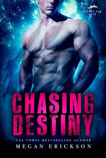 romance novel covers, M/M romance, Paranormal Romance, Chasing Destiny by Megan Erickson