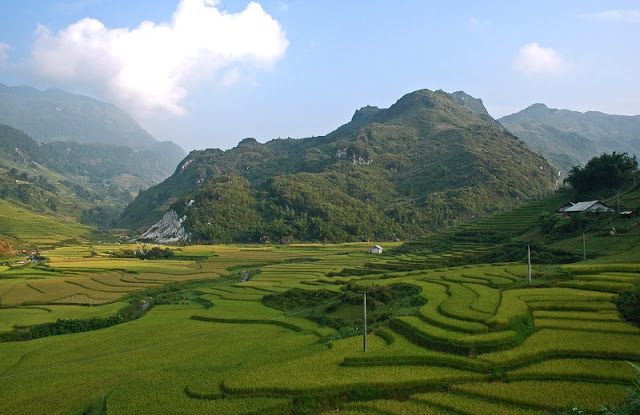 Experience the Northwest terraced fields by trekking