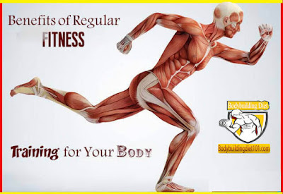 Benefits of Regular Fitness Training for Your Body