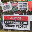"The ""Oromia Question"" A Reflection of Ethiopia's Misgovernance"
