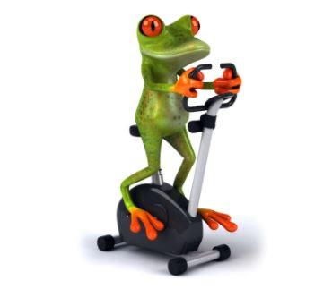 Gambar Katak Lucu Olahraga di Speda Statis Fitness