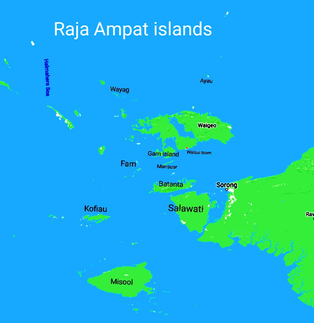 Raja Ampat is a highly recommended destination for marine tourism