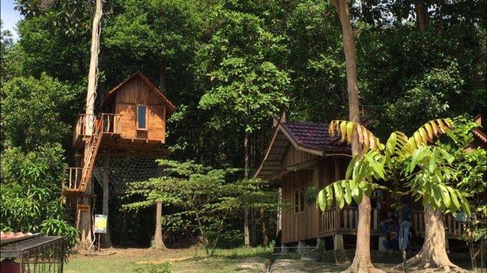 Camping ground di wisata alam sebapo Jambi