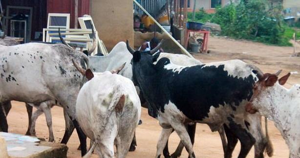 4 fulani cattlemen killed cross river state
