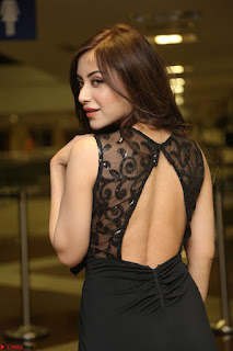 Angela Krislinzki in Transparent Black Gown at Rogue Movie Teaser Launch 1st March 2017 022.JPG