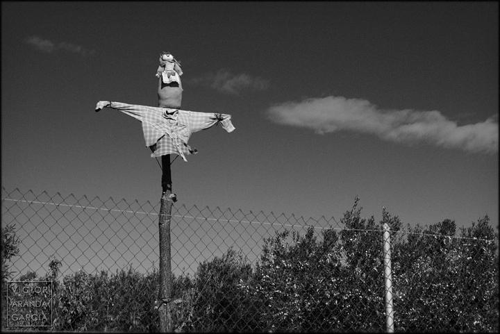 fotografia,espantapajaros,fuente-alamo,murcia,arriba-extraña,serie,arte,