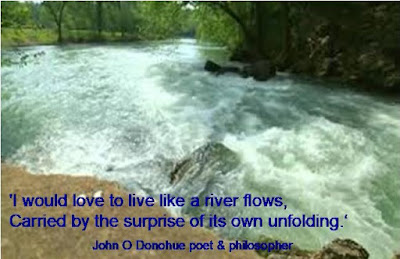 Image result for perennial river like life