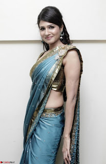 Bollywood Actress in Saree Spicy Pics 03.jpg