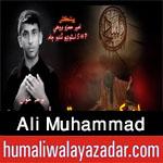 http://www.humaliwalayazadar.com/2016/10/ali-muhammad-nohay-2017.html