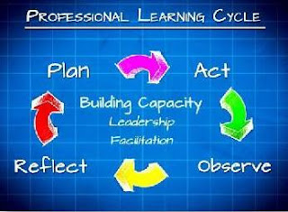 Professional Learning Cycle
