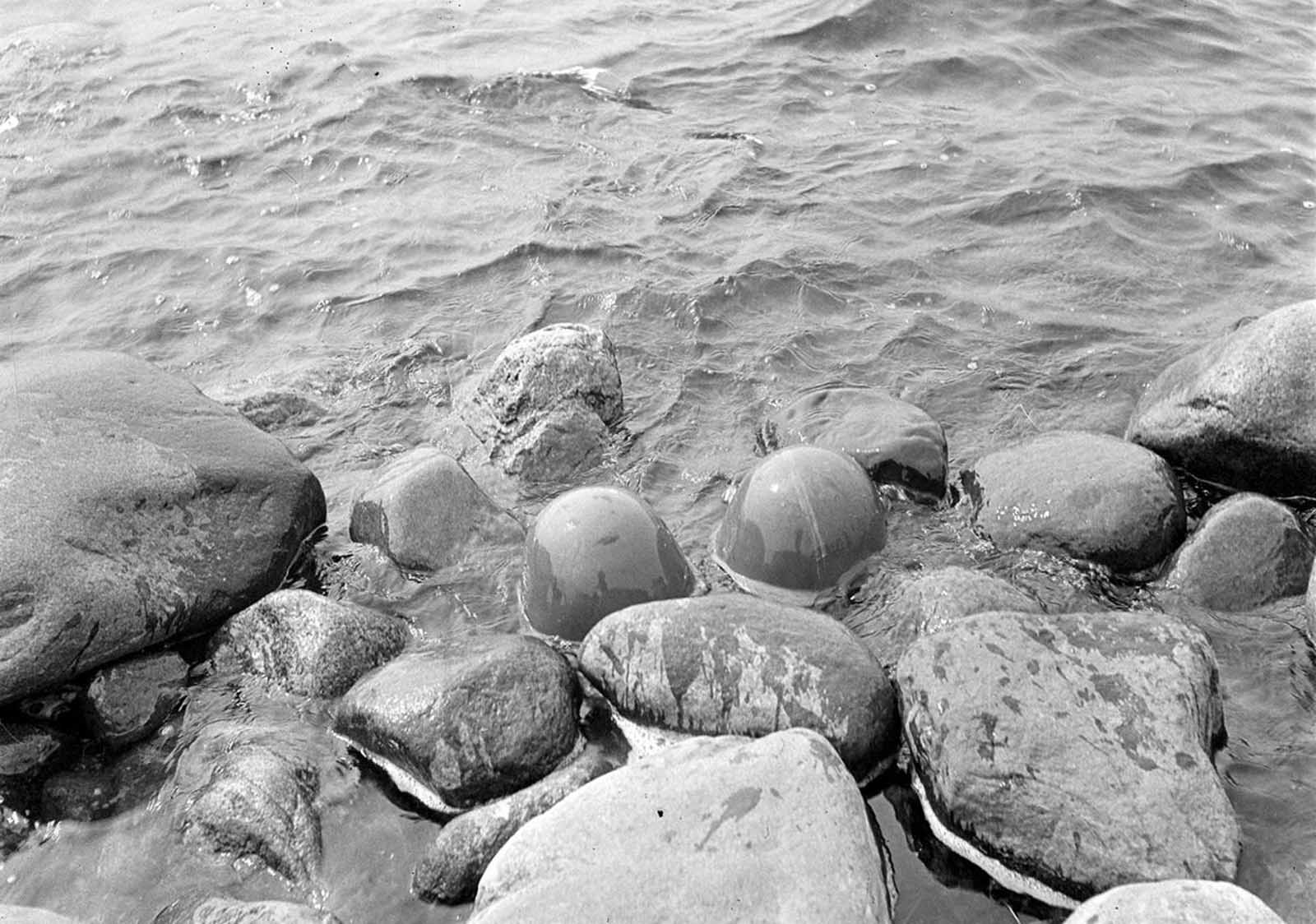 Lunkula island, Jumitsa bay on the south side of village of Varpahainen. Helmets of dead Russians, on July 28, 1941.