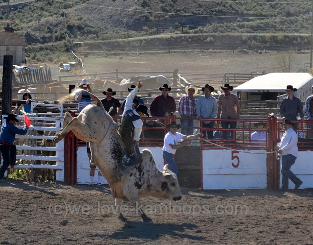 Bull riding is a very exciting segment of the rodeo