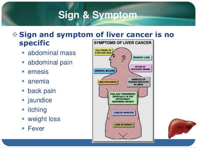 maga helth for you: liver cancer symptoms, Human Body