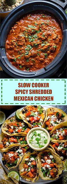 Spicy Shredded Mexican Chicken