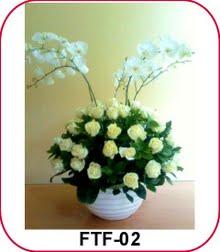 Menjaga Pesona Bunga Anggrek Bulan