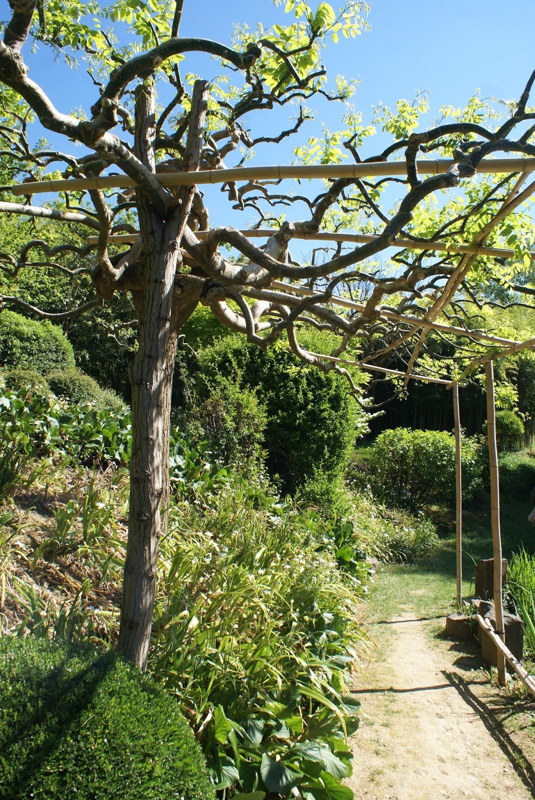 jardin zen erik borja