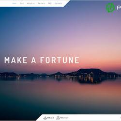 Make a Fortune: обзор и отзывы о makeafortune.biz (HYIP СКАМ)