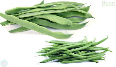 কড়াইশুঁটি, শিম, Bean; فاصوليا; 豆; सेम; 豆; Fagiolo; Бобы