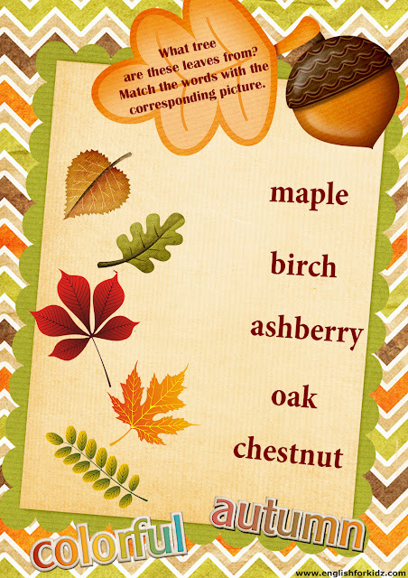 trees leaves names matching worksheet, English for kids