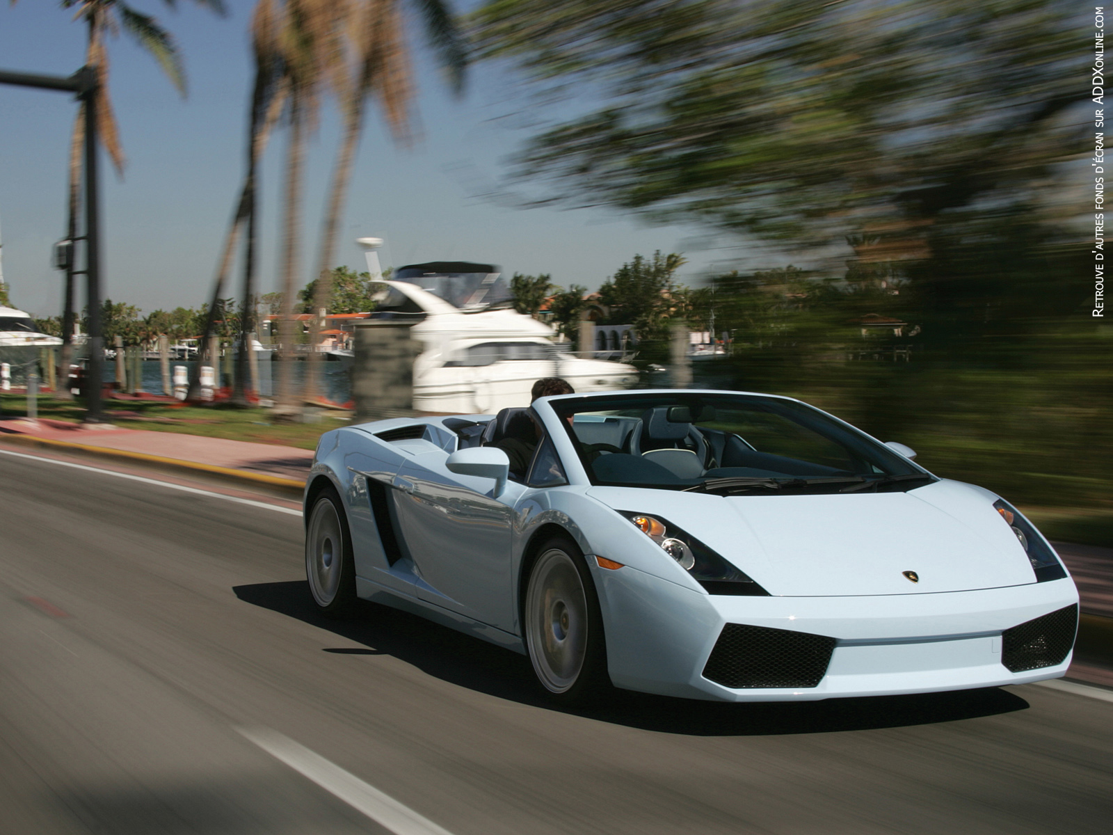 Lamborghini Cars Wallpapers | CARS WALLPAPERS COLLECTIONS