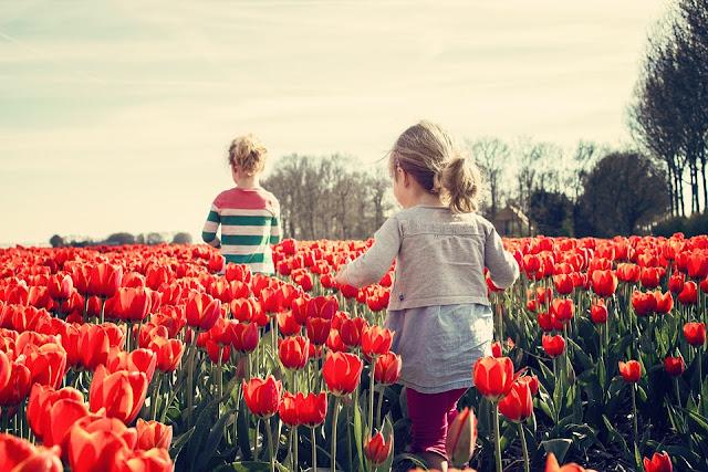 porównywanie dzieci, macierzyństwo, dobre rady, nic nie zrobisz, noszenie na rękach, mówienie, chodzenie