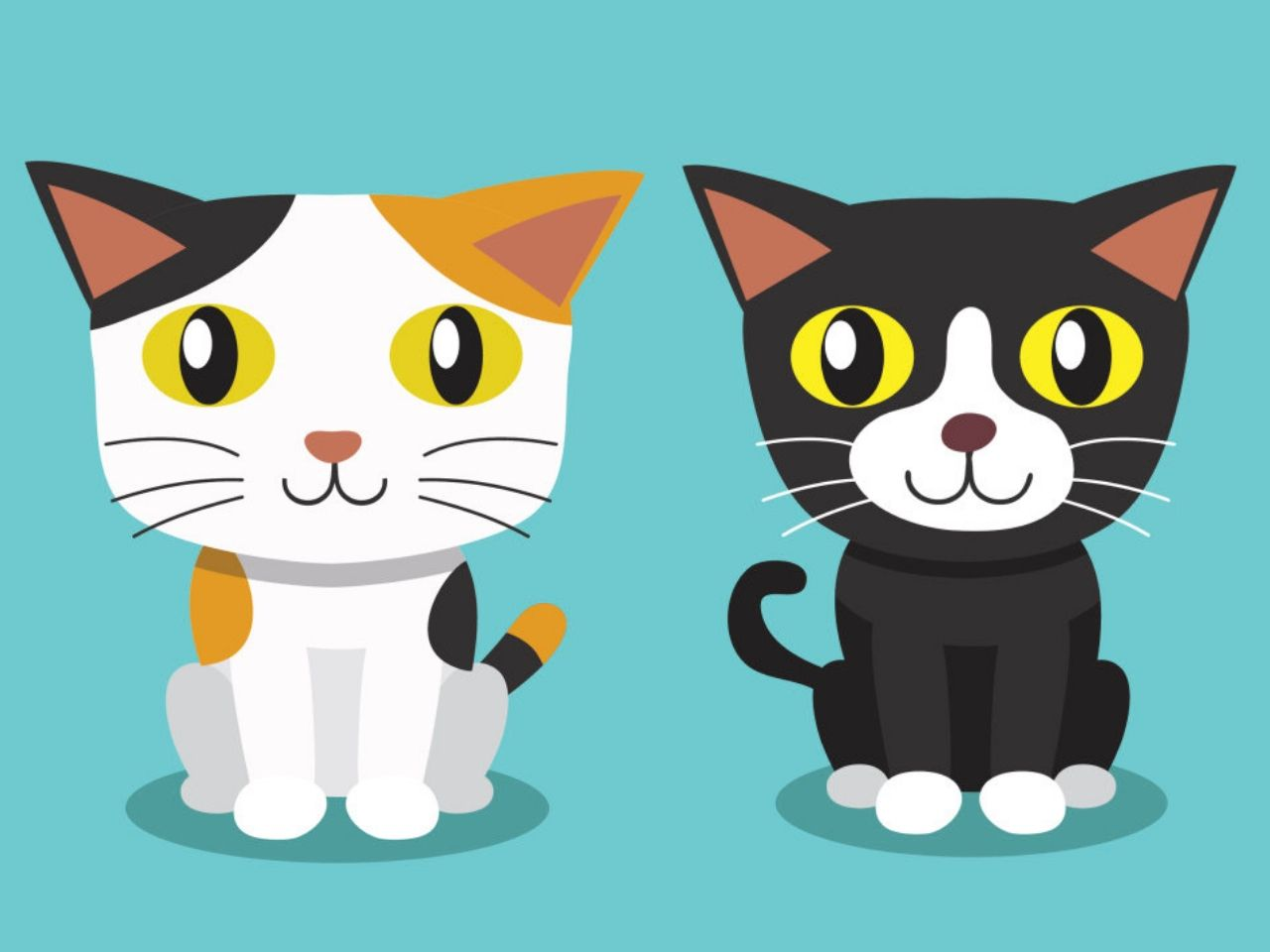gambar kartun lucu kucing