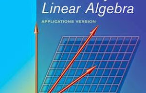 Elementary Linear Algebra 10th Edition Solution Manual Pdf