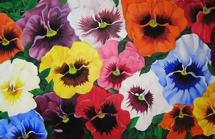 Pansy Good Witches Magickal Flowers And Herbs