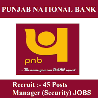 Punjab National Bank, PNB, freejobalert, Sarkari Naukri, PNB Answer Key, Answer Key, pnb logo