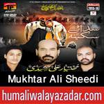 http://www.humaliwalayazadar.com/2015/10/mukhtar-ali-sheedi-nohay-2016.html