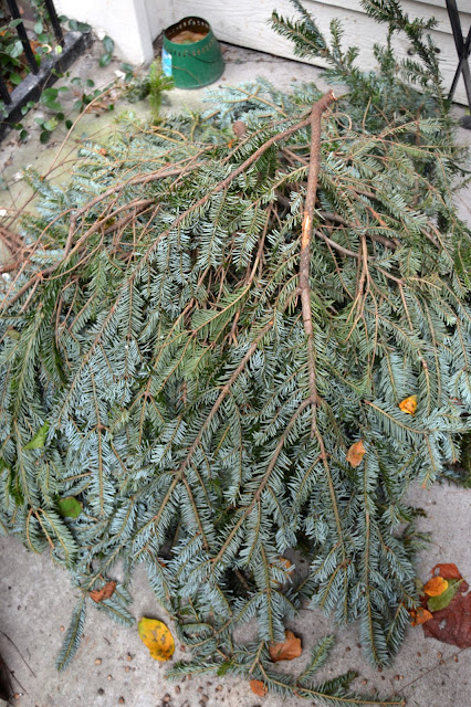 Fresh Bough Wreath, Christmas Wreath, Free Boughs