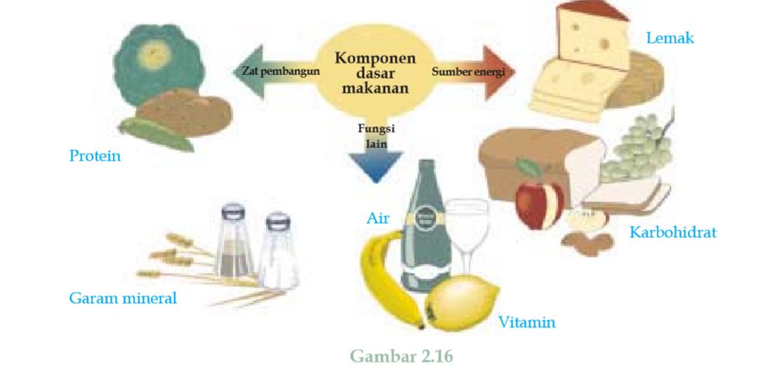 លទ្ធផលរូបភាពសម្រាប់ Kandungan karbohidrat dan protein
