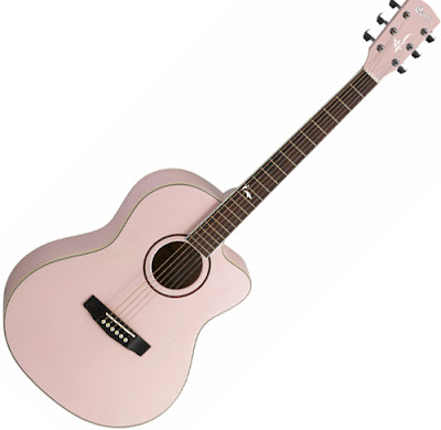 daftar harga gitar cort akustik