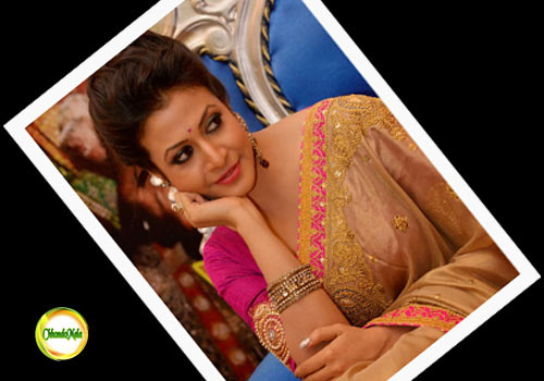 Bengali Actress-Koyel Mallick- Biography Image