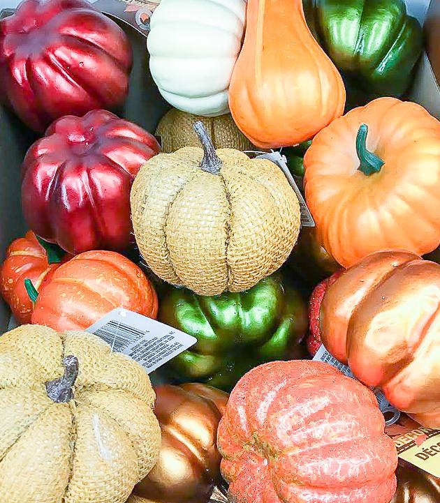 Small Dollar Tree pumpkins