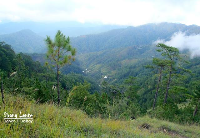 Trail Mt. Ugo