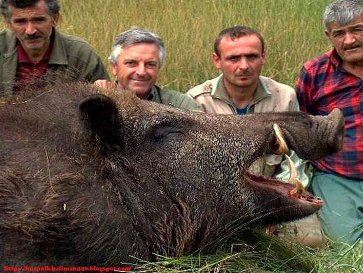 Cindhelaras Photography: Husnul Blogger: 10 Photos Giant Animals