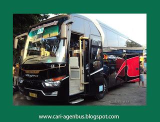 Cari Nomor Telepon Agen Bus Bejeu