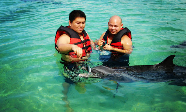 swimming and feeding dolphins in Misamis Occidental Aquamarine Park and Dolphine Island