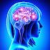 4 zbulime në Neuroshkencë që ripërkufizojnë Lumturinë