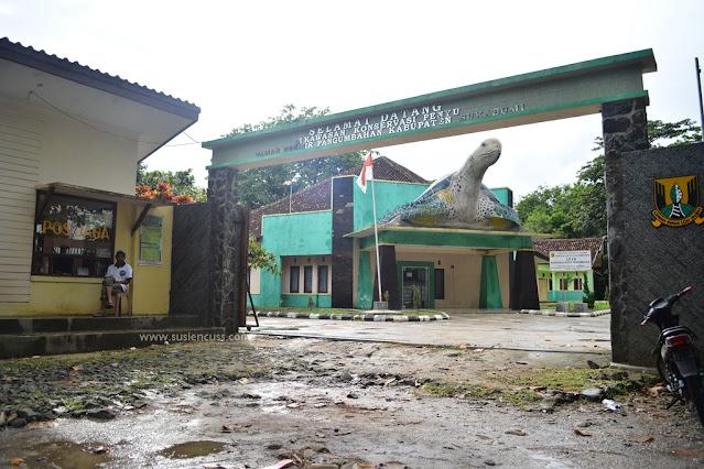 Harga tiket ke Kawasan Konservasi Penyu Pantai Pangumbahan Sukabumi