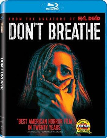 Don't Breathe (2016) Dual Audio Hindi 480p BluRay x264 300MB ESubs