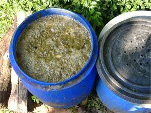 Cara Mudah Membuat Pupuk Organik Cair Berbasis Urine