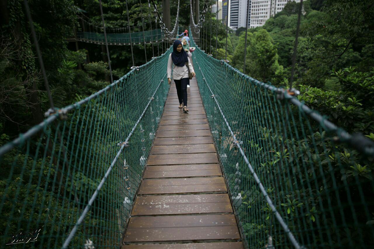 Sambut Birthday di Bukit Nanas Forest Reserve Kuala Lumpur