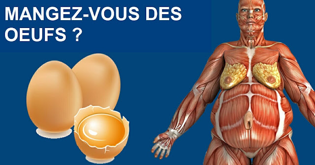 Research reveals: What happens to your body if you eat two eggs a day