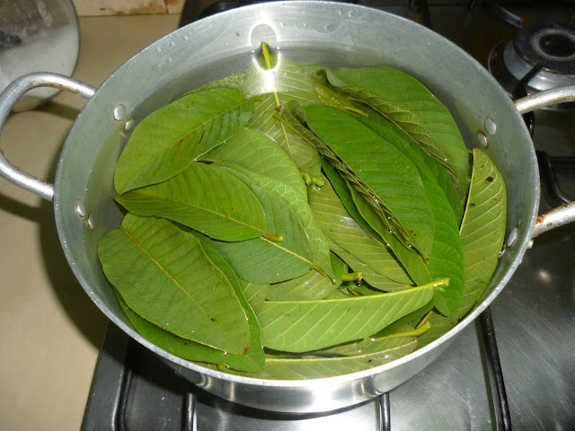 Image result for BOILING GUAVA  LEAVES  IMAGES