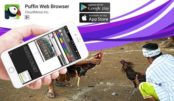 Langkah Bermain Sabung Ayam Online Di HP Android