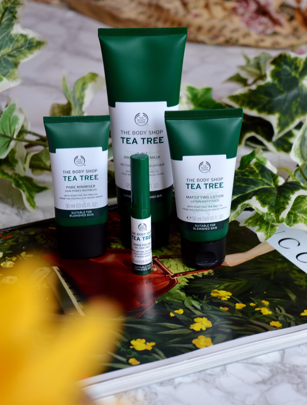 THE BODY SHOP TEA TREE RANGE REVIEW | The Perks Of Mollie Quirk