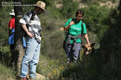 http://www.biodiversidadvirtual.org/insectarium/Participantes-Testing-Punto-BV-Espacio-Pirineos-Graus-9-5-2015-img691428.html