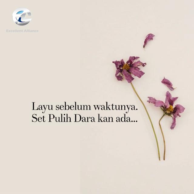 www.syikinsalleh.com
